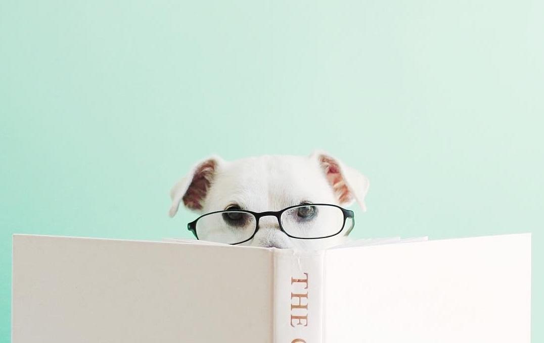 6 нетривиальных книг о бизнесе, которые изменят взгляд на мир